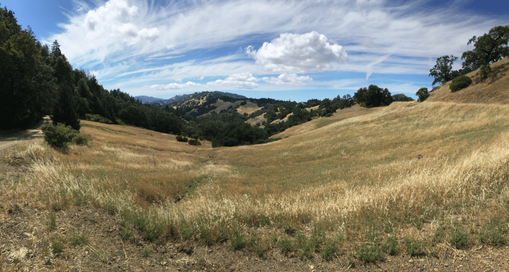 The view from Gloeckner-Turner Ranch
